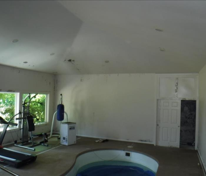 Peaked ceiling, door, pool and exercise equipment