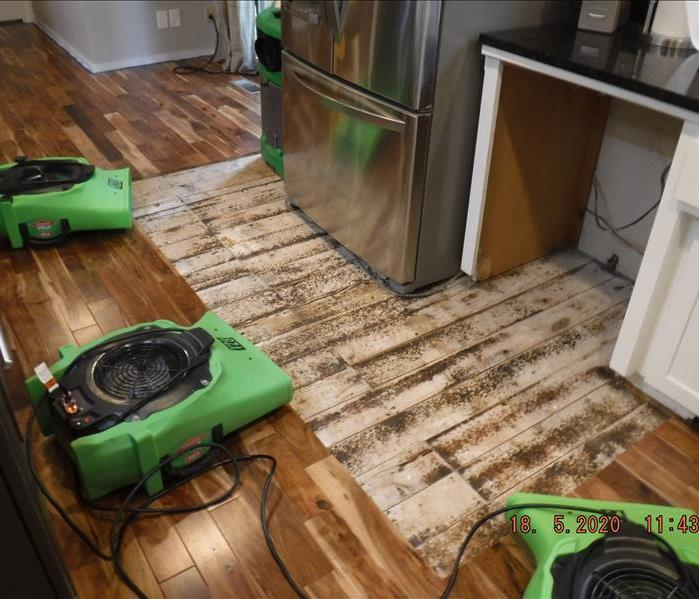 Refrigerator replaced, dishwasher is still gone and green equipment on the floor