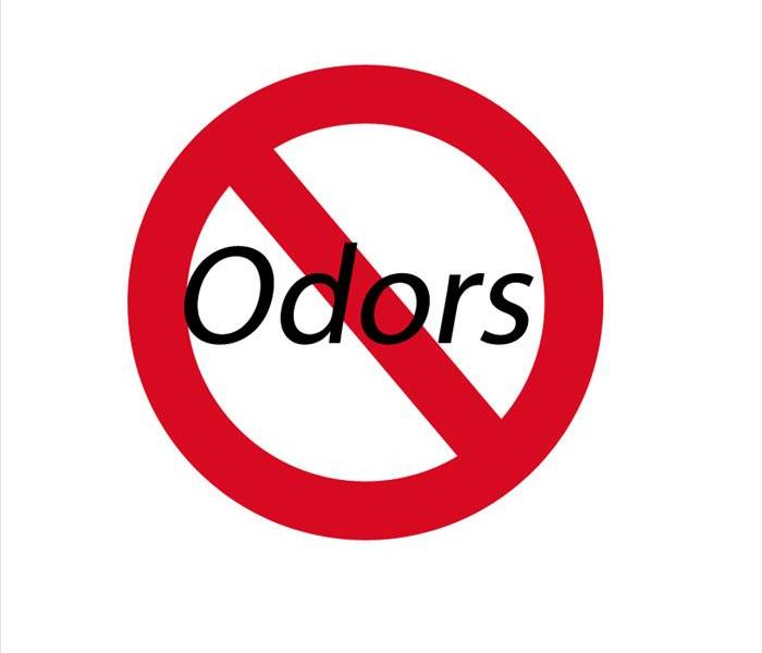 Cleaning Odors and how to conquer them