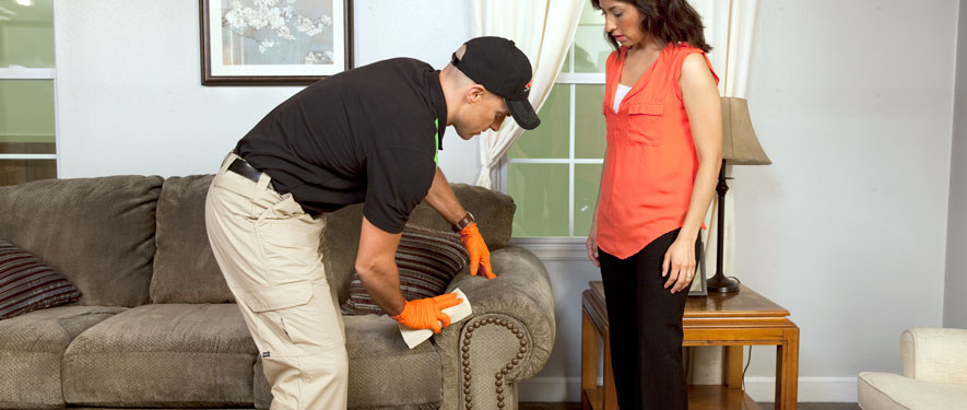 Gig Harbor, WA carpet upholstery cleaning