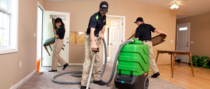 Gig Harbor, WA cleaning services